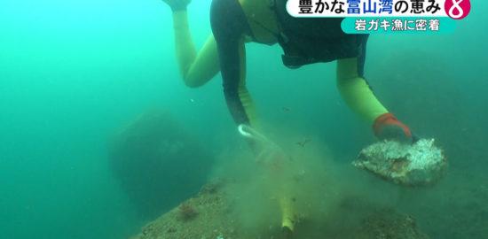 岩ガキ漁2
