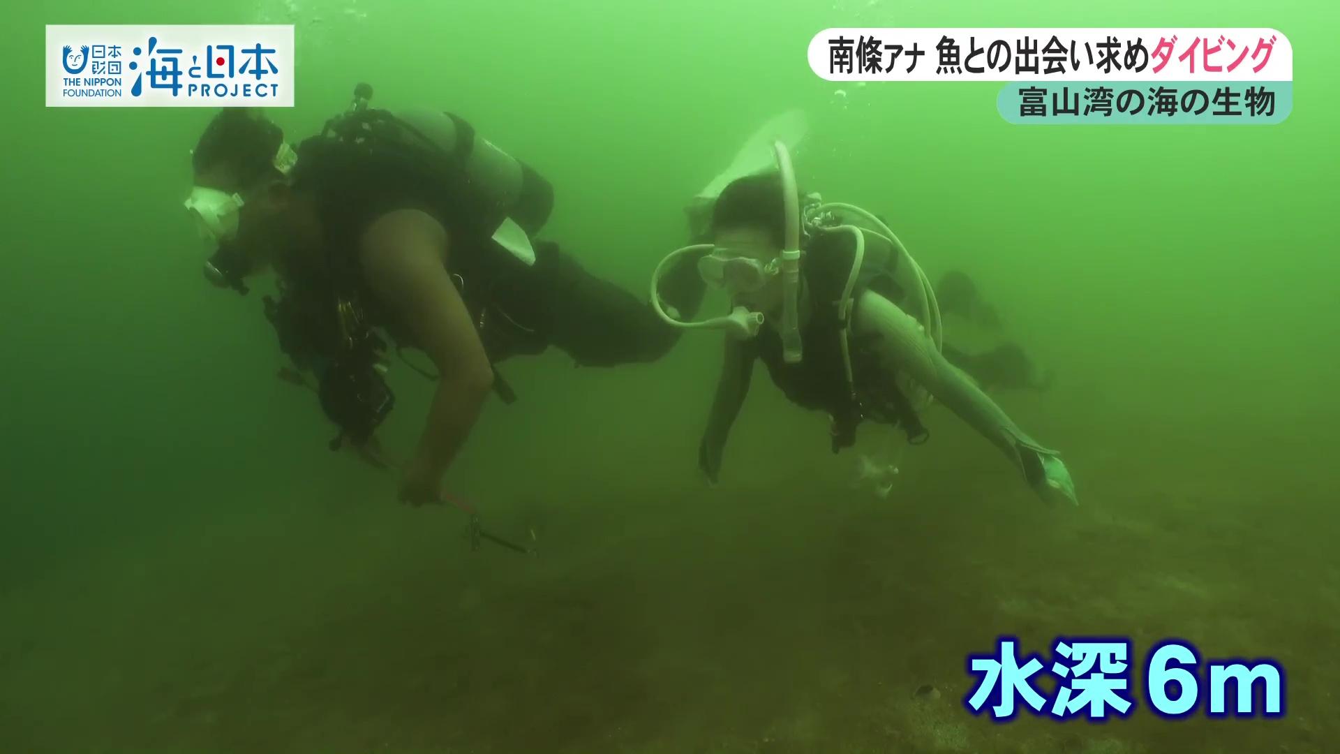 富山県-A23-s2