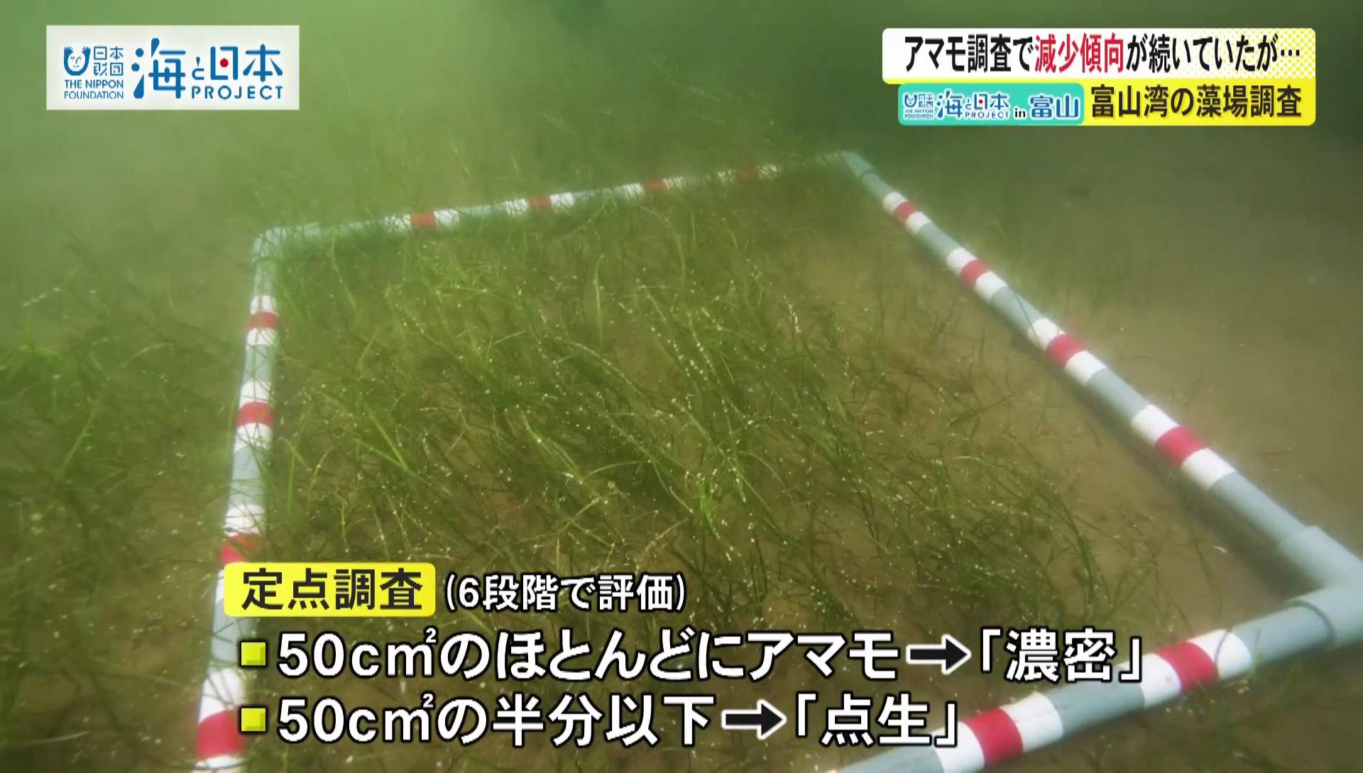 富山県-A32-s2