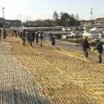 2月27日ホタルイカ漁解禁目前 でも雪の影響で網足りない