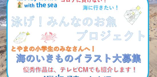 海のいきものイラスト大募集