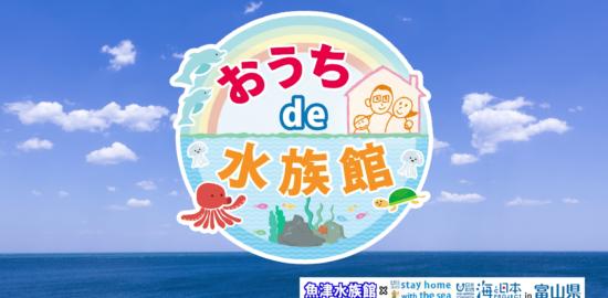 おうちde水族館_海と日本プロジェクトin富山県